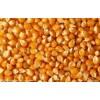 饲料厂大量求购玉米大豆小麦棉粕等
